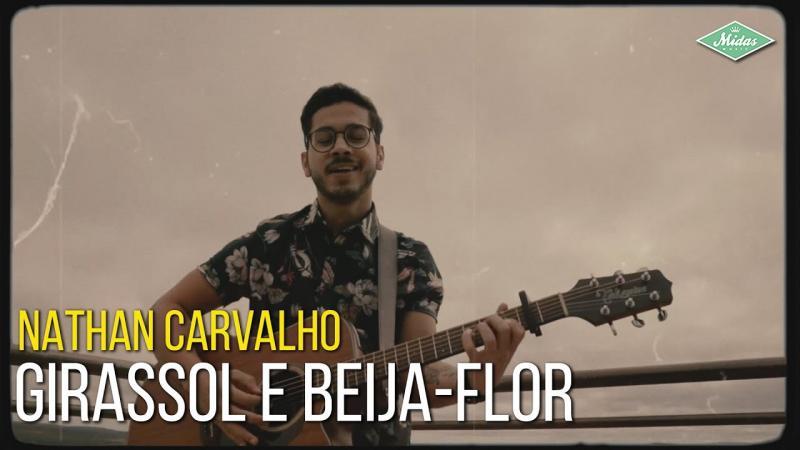 Nathan Carvalho - Girassol e Beija-Flor
